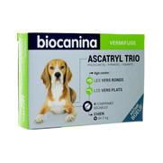 Ascatryl trio chien, boîte de 1 plaquette de 4 comprimés sécables