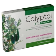 Calyptol inhalant, 10 ampoules de émulsion pour inhalation par fumigation