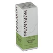 Pranarôm huile essentielle eucalyptus radié - 10 ml