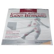 Saint bernard emplâtre américain grand modèle